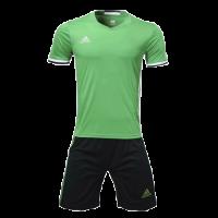 Customize Team Soccer Jersey Kit (Shirt+Short) Green - 1707